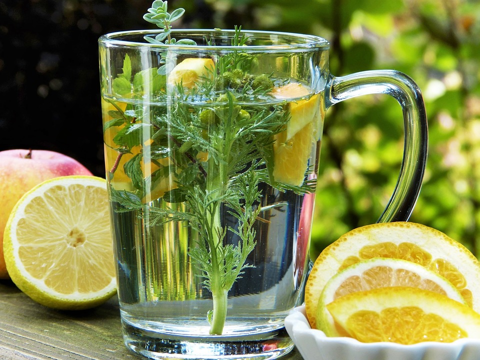 Herbs For Health Coughs And Colds