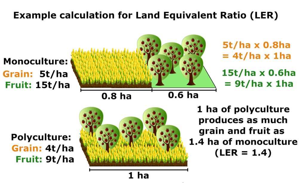Monoculture to Horticulture