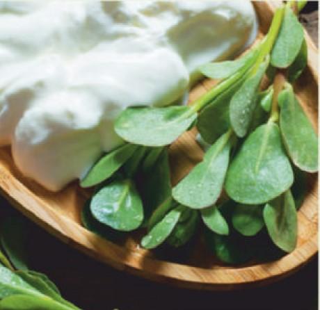 Pigweed Salad
