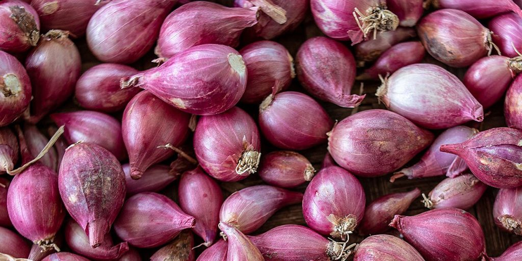 What is Shallots